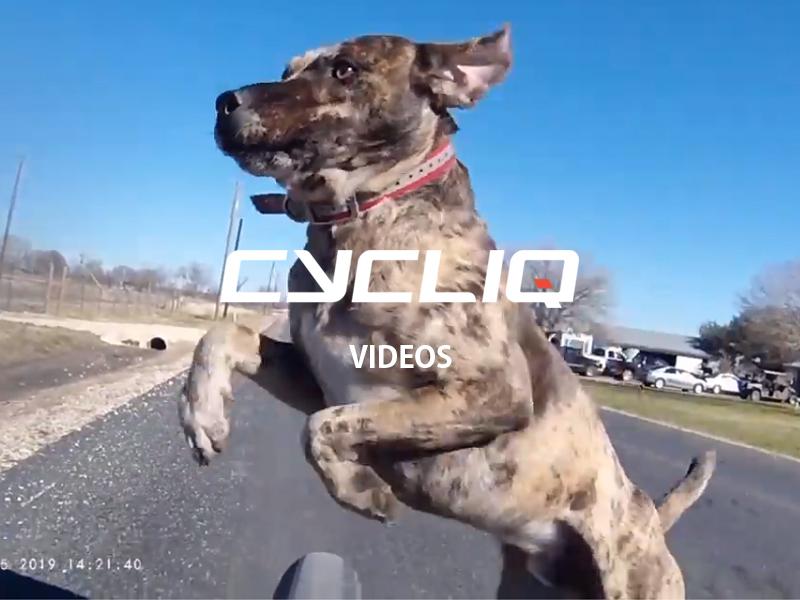 皆が投稿!CYCLIQ(サイクリック)投稿動画リスト